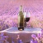 Wine, Women, & Wills – Wines for Spring :)