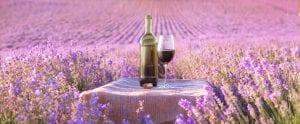 Wine, Women, & Wills - Wines for Spring :)
